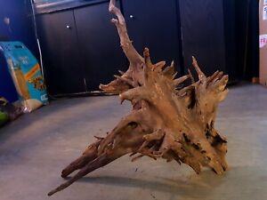 L-CorboCatfish-root-aquarium-wood-for-fish-tank-driftwood-moss-bogwood-40-56cm
