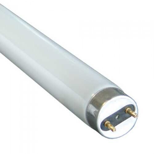 x 25 F58w 835//840 865-5 pieds 58 watt t8 fluoresent tube extra longue vie