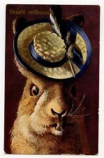 ARTHUR THIELE. MAGNIFIQUE PORTRAIT DE LAPIN AU CHAPEAU. RABBIT IN the HAT.