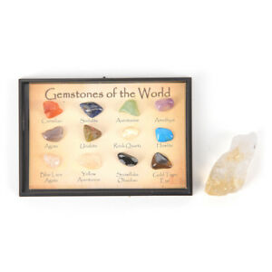 12Pcs-Box-Rock-Gemstones-Collection-Quartz-Crystal-Natural-Mineral-Specim-NTAT