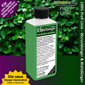 efeu d nger fl ssigd nger f r immergr ne kletterpflanzen efeu euonymus u a ebay