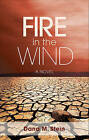Fire in the Wind by Dana M Stein (Paperback / softback, 2010)