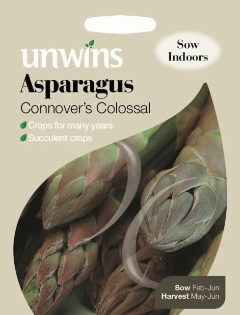 Unwins Pictorial Packet - Vegetable - Asparagus Connover's Colossal - 120 Seeds
