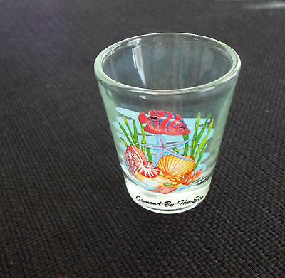 Ormond By The Sea Florida Shot Glass with Fish /& Shells