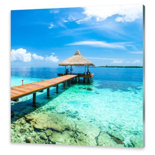 Glasbilder Wandbild Druck auf Glas Tropisches Paradies