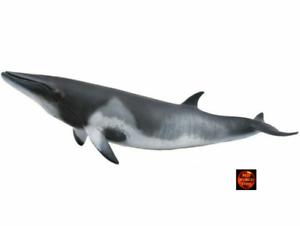 Modelo-De-Juguete-Collecta-divisar-ballenas-Sealife-figura-88862-Nuevo-Para-2019