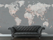 315 x 232cm Wall mural photo wallpaper Silver World map | glue not included