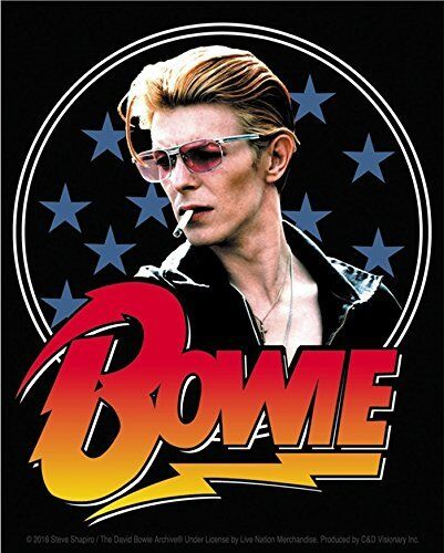 b David Bowie vinyl sticker for skateboard luggage laptop tumblers