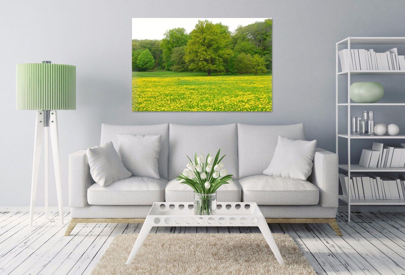3D Gold Canola Blaume Baum  8564 Fototapeten Wandbild BildTapete AJSTORE DE Lemon