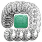 2016 1 oz Silver American Eagle Coins