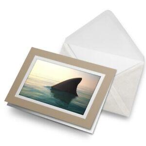 Greetings-Card-Biege-Shark-Fins-Sharks-Ocean-Predator-Sea-24174