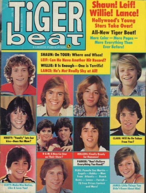 Tiger Beat January 1978 Shaun Cassidy Leif Garrett Rollers 021419DBE