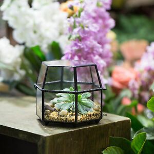 Geometric Terrarium Plant Pot Planter For Succulents Flower Pot