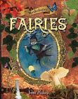Fairies by John Malam (Hardback, 2009)