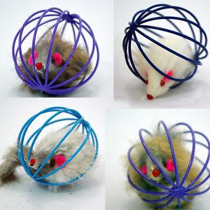 Regalo-jugar-Juguetes-falsas-raton-jaula-de-ratas-Pelota-Para-Mascota-Gato-amp-k