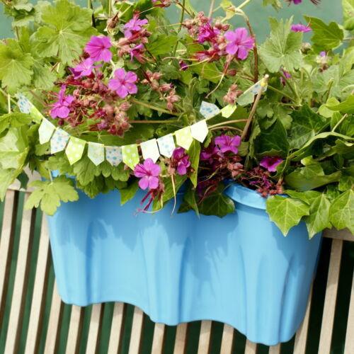 halterlose Befestigung Design Blumenkasten für ein Balkongeländer in fuchsia