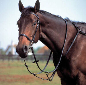 Windsor Equestrian Horse Standing Martingale