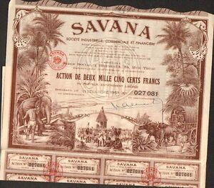BORDEAUX PONDICHÉRY INDE TOP DECO =/> SAVANA L