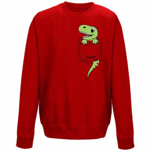 Kids Childrens Pocket Dinosaur Dino Cute Character Print Sweatshirt Jumper