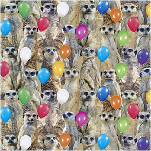 Funny Meerkats Birthday Card Meerkat Party Birthday Balloons Glitter