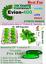 evion-vitamin-E-400-cap-for-face-hair-acne-nails-beauty-skin-EVION-by-MERCK-LTD thumbnail 1