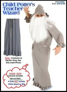 Childs potters teacher wizard gandalf costume harry dumbledore image is loading childs potters teacher wizard gandalf costume harry dumbledore solutioingenieria Images