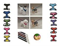 NO CHOKE Anti Pull Breathable Mesh Matching Dog Harness & Lead Sets - 10 Colors
