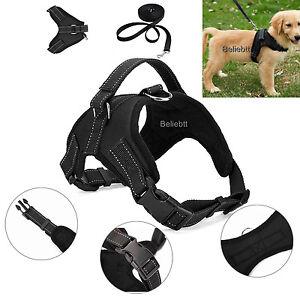 BLACK Pet Control Harness For Dog & Cat Soft Mesh Walk Collar Safety Strap Vest
