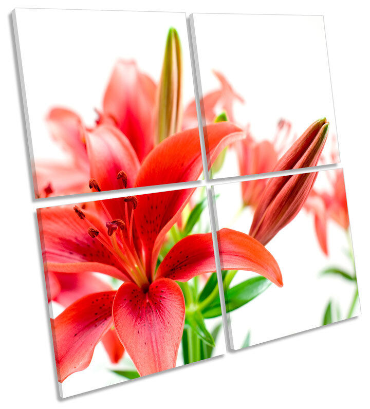 Tiger Lily Floral Flower MULTI CANVAS WALL ART Square Print