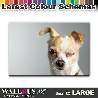 Dog Puppy Chihuahua ANIMAL  Canvas Print Framed Photo Picture Wall Artwork WA