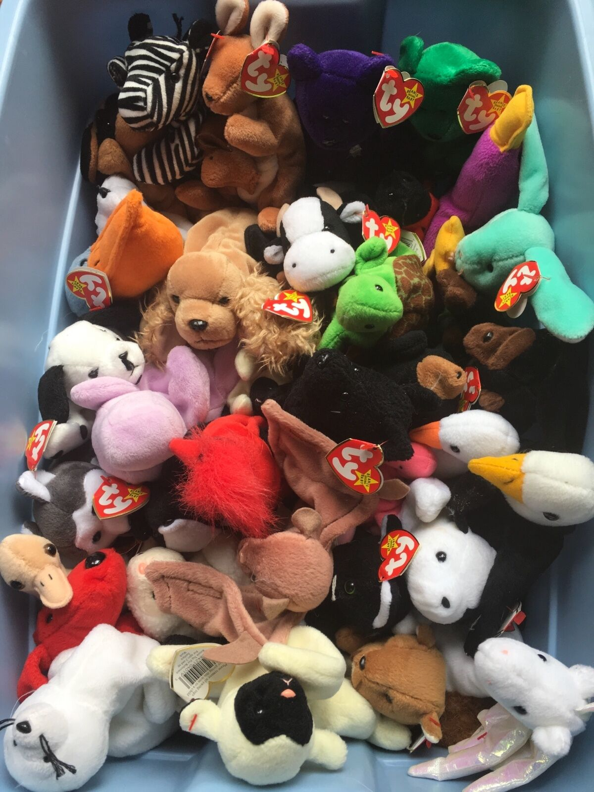 HUGE Collection - 34 NEW Beanie Babies Babies Babies w  1997 Princess Diana & Erin rare gems ad07ff
