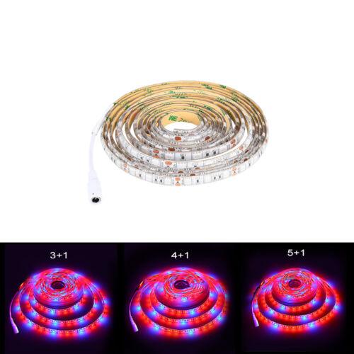 LED Grow Light Strip 12V 5050 300LED Full Spectrum Grow Light Red/&Blue 1m 3m 5m