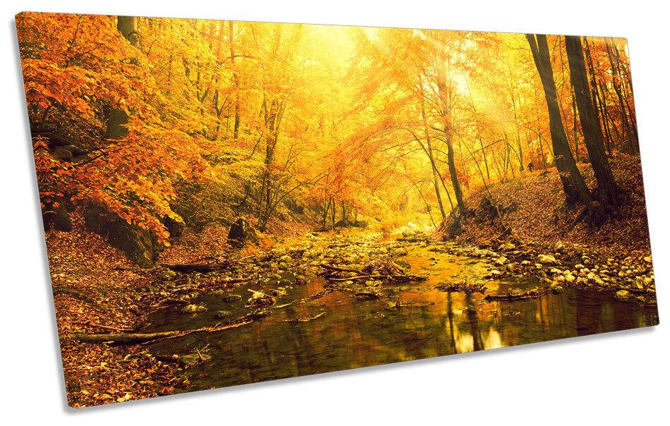 Sunset Forest River Landscape CANVAS Kunst Drucken Panoramic Bild