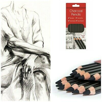 NEW PROFESSIONAL 12 CHARCOAL ARTIST PENCILS DRAWING SKETCHING SHADING DRAW TONES