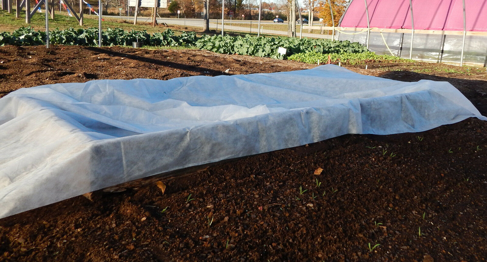 AG-0.5 Floating Row Crop Cover / Frost blanket / Garden Fabric - 6' x 50' - 1 Ea