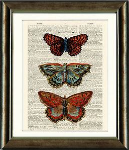 Antique Book page Art Print - Butterflies 1 Wall Art Upcyled Vintage Print
