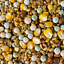 thumbnail 3 - SQUAWK Four Seasons Pigeon Corn - General Year Round Food Mix for Wild Birds