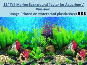 """12"""" """"Tall sfondo marino su poster in Plastica per Acquario/Terrario 053  </span>"""