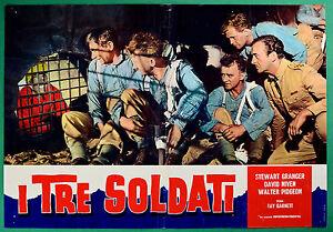 T29-Fotobusta-I-Drei-Soldaten-David-Niven-Stewart-Granger-Walter-Pidgeon