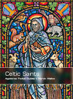 Celtic Saints by Martin Wallace (Paperback, 2007)