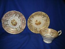 Cup and Saucers British ceramic Antique Hand Painted Diamond-shaped mark c1848