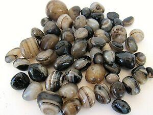 Black-Honey-Onyx-Tumbled-Stone-20mm-Qty1-Reiki-Healing-Crystal-by-Cisco-Traders