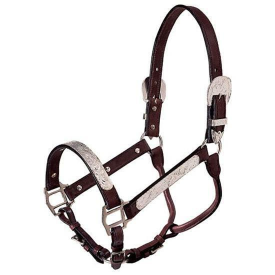 Royal King Show Halter and Lead