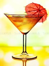 MODERN PHOTOGRAPHY COCKTAIL DRINK GLASS UMBRELLA LARGE POSTER ART PRINT BB3126A