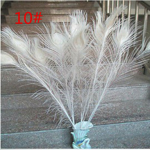 Wholesale 10-100 PCS White /& Rice white Feathers decoration DIY 5-70CM//2-28 /""