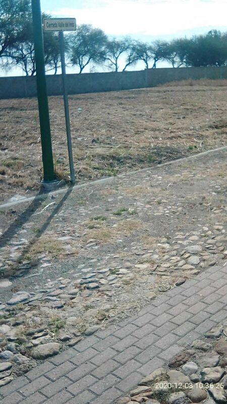 TERRENO EN VENTA FRACC VALLE DE SANTA RITA, LEON, GTO