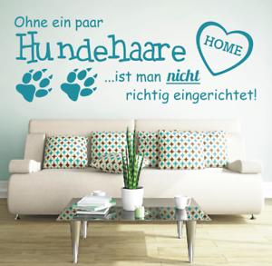 X2521-Wandtattoo-Spruch-Ohne-ein-Hundehaare-Hund-Wandaufkleber-Wandsticker