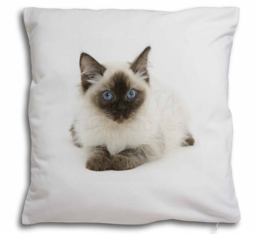 Ragdoll Cat with Blue Eyes Soft Velvet Feel Cushion Cover With Inner AC-159-CPW