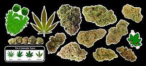Weed-Marijuana-Cannabis-Vinyl-Sticker-Bud-Pack-2