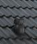 Braas Frankfurter für Sanitär Entlüfter Dachlüfter Sanilüfter